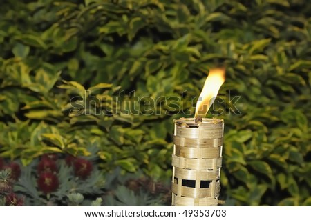 Torch burning to light the way