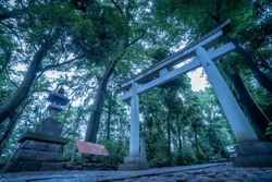 Torii gate in a japanese shinto shrine, Letters of kanji mean to present something