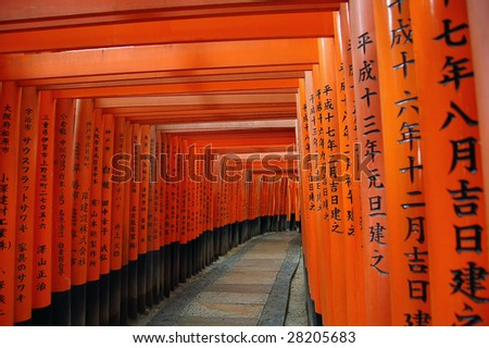 Torii gates in Kyoto, Japan.