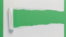 Torn Paper Strip on Green. Torn Paper showing green background isolated on a white background