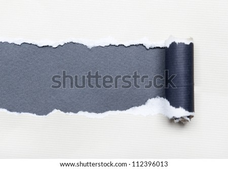 Torn white paper with grey space for your message. Paper roll