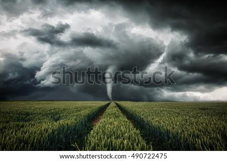 Tornado raging over a landscape - storm over cornfield