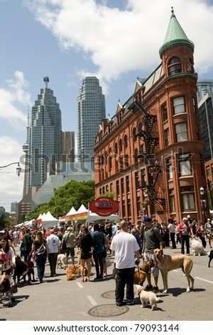 TORONTO, CANADA – JUN 12: Dog lovers gather at Woofstock, the largest outdoor festival for dogs in North America since 2003, in the St. Lawrence Market Neighborhood June 12, 2011 in Toronto, Ontario.