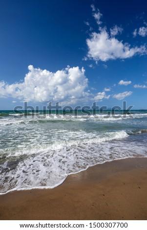Torre Mozza (Li), Tuscany, Italy, waves on the shoreline of the beach #1500307700