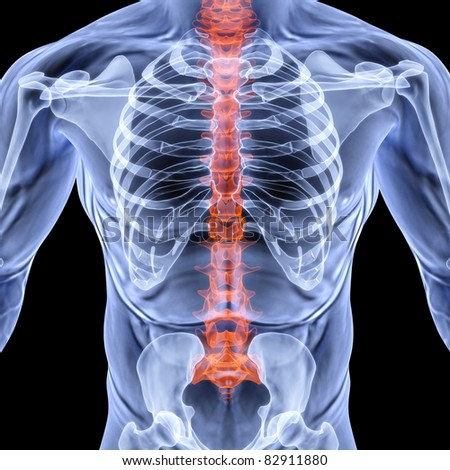 torso men under X-rays. backbone is highlighted in red. isolated on black.