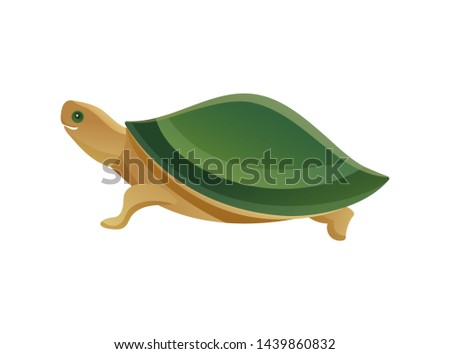 Tortoise pet shop animal with scaly or leathery domed shell shielding from predator turtle slow-moving reptile raster illustration isolated on white