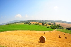 Toscana landscape of the wheat field with hay bales