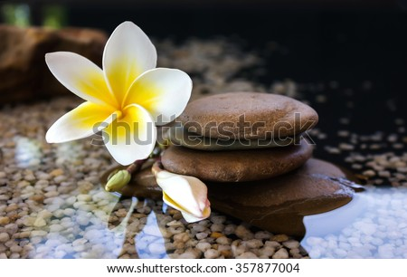 Touching nature with relaxing and peaceful with flower plumeria or frangipani decorated on water and pebble rock in zen style for spa meditation mood