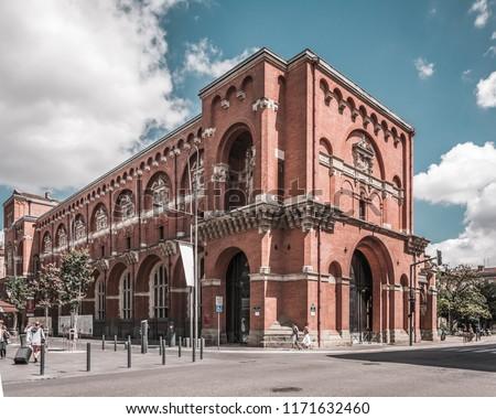Toulouse - Pink City (La Ville Rose), France