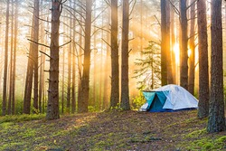 Tourism concept. Dawn in a foggy forest with a lonely tent. Man lives in the forest