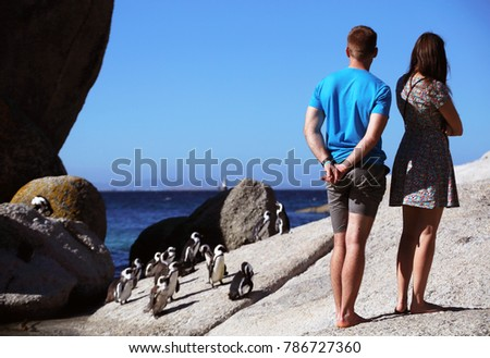 Tourist at Boulders penguin colony. Cape Town. South Africa