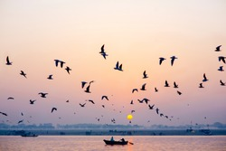 Tourist boat on the Ganges river in Varanasi (Benares) during a sunrise surrounded by birds