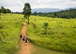 tourist group walking on mountains in thailand.Nature trail in the rainy season at the national park. Khao Yai Thailand.Tourists are walking on the corridor.