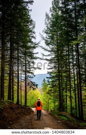 Tourist in the forest, Poland, Rudawy Janowickie, Dolnośląskie  Zdjęcia stock ©