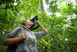 Tourist looking through binoculars considers wild birds in the rain forest. Bird watching tours