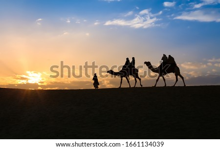 Tourist on camel back in silhouette at sunset at Thar deser Jaisalmer Rajasthan, India Zdjęcia stock ©