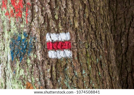 Tourist sign on the tree for a tourist trip #1074508841