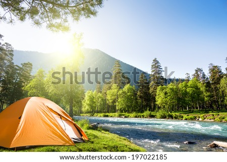 tourist tent in forest camp