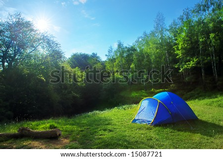 Tourist tent in the green fores, blue sky and sun #15087721