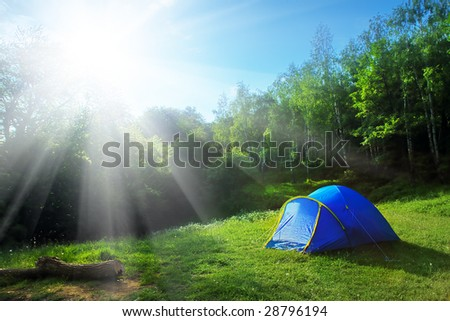 Tourist tent in the green fores, blue sky and sun
