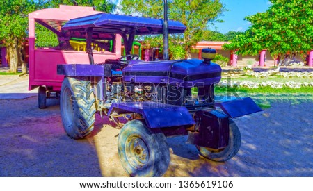 Tourist train, multi-colored cabins and a purple tractor. To the delight of tourists and their children.