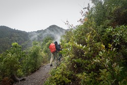 Tourist walking the Kumano Kodo trail in the rain among the misty mountains. Kumano Kodo is a series of ancient pilgrimage routes that crisscross the Kii Hanto, the largest peninsula of Japan.