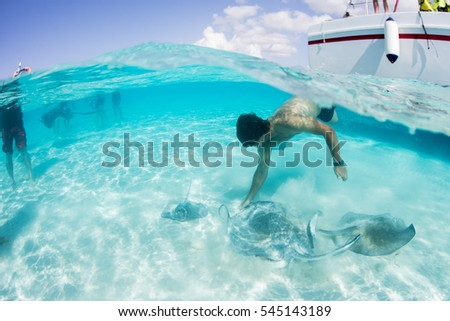 tourist watches stingray swimming on the bottom of the caribbean with crystal clear water and white sand at stingray city Grand Cayman