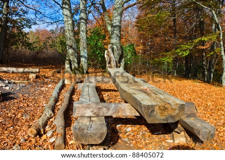 touristic camp in a autumn forest