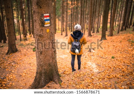 Touristic sign or mark on tree next to touristic path with female tourist in background. Nice autumn scene. Forrest trail. #1566878671