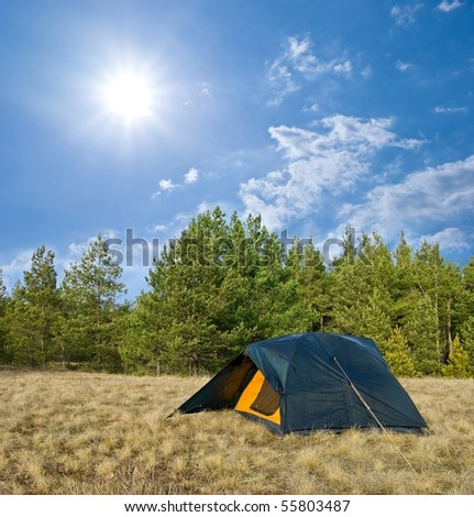 touristic tent in a forest glade by a sunny day