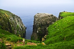 Tourists at cliffs of Cape St. Mary's Ecological Bird Sanctuary in Newfoundland