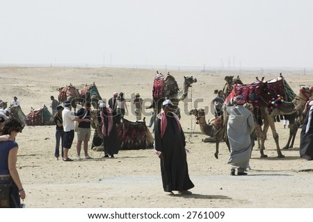 tourists by the camels