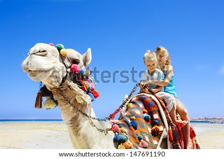 Tourists children riding camel  on the beach of  Egypt. Sharpness on a camel.