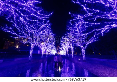 Tourists enjoying the beautiful scenery of Winter Illumination Display for Christmas & New Year with trees along the street decorated in bluish purple lights in Shibuya, Tokyo, Japan