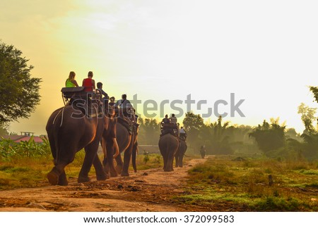 Tourists on an ride elephant tour in the forest.