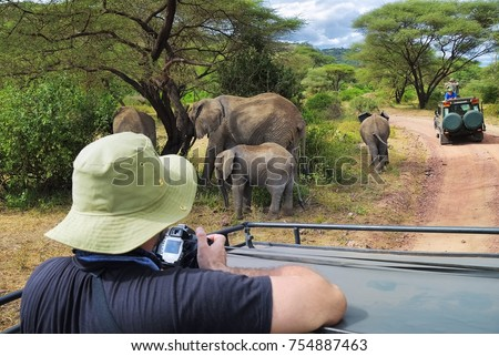 Tourists on game drive taking pictures of elephants in  Lake Manyara National Park, Tanzania, Africa