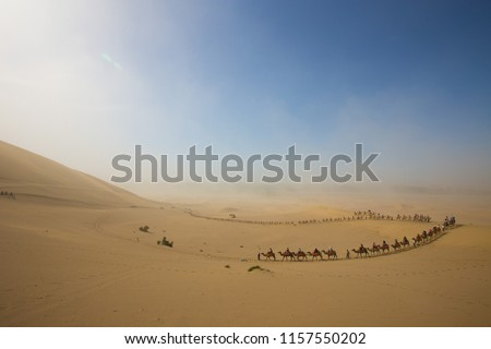 Tourists ride Camel over Sunshine Summer Desert over blue sky, Travelers riding Camels as Caravan group tour on route Sand road in Sand Storm at MingShaShan, DunHuang, China #1157550202
