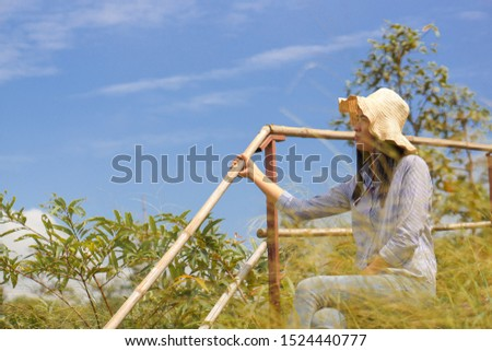Tourists, traveler Woman watching Forest view, scenic area #1524440777