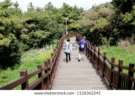 Tourists walking down from Seongsan Ilchulbong (Sunrise Peak)  during spring time in Jeju Island,South Korea. This inactive volcano is one of the UNESCO nature tourism site.