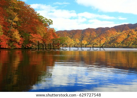 towada lake  in autumn