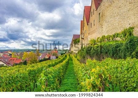 Town of Lauffen am Neckar, Heilbronn Region, Baden-Württemberg, Germany: View along the medieval town wall through the vineyards in the upper town to the Regiswindis Church in the lower town.