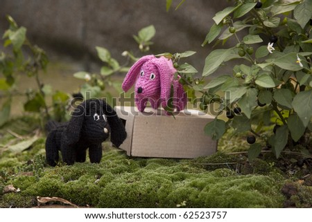 toy - dog on moss