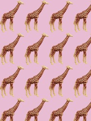 Toy giraffes on a pink background. Toys pattern. Top view.