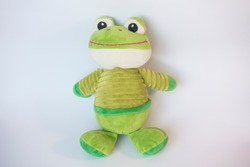 toy green frog doll fabric cloth stands on soft white background.