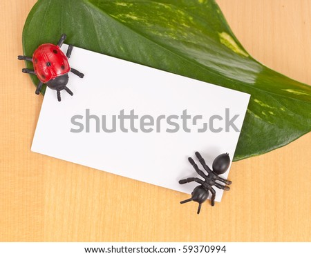 Toy Insects with Blank Card on Leaf