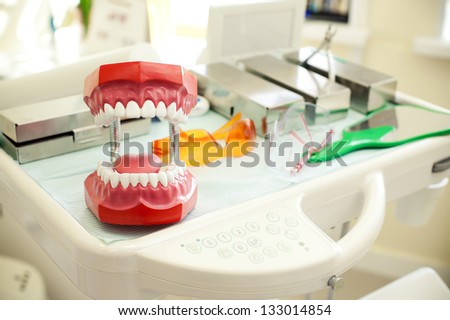 toy jaw in cabinet of dental clinic.