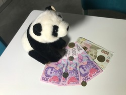Toy Panda waiting on coins made of 100 and 200 500 Ukrainian coins composition on white table Great composition Macro shooting conceptual Ukrainian money shoot buying now.