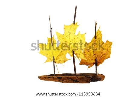 Toy sail ship from pine bark, twigs and maple leaves isolated on white