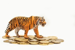 Toy tiger, miniature model of an animal and coins on a white background. Tiger money Protection
