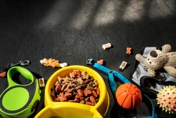 Toys for pets dog and cat. Pet care concept. Toys near bowls with animal feed on dark background top view copy space